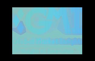 Global Market Insights, Inc. Logo- Market Study Rport